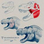 Stan the T. rex HEAD