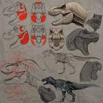 Jurassic Park T. rex studies