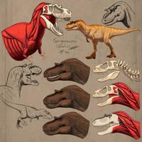 Gorgosaurus libratus Sketches