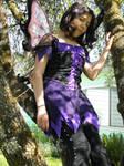 Fairy Times