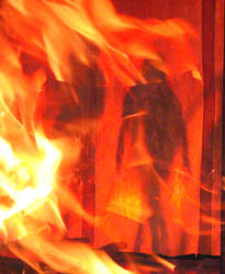 she's on fire by thiagofeba