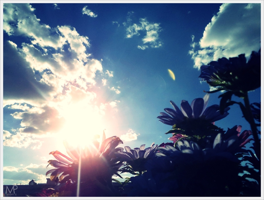 Flo-sky by MEPeace