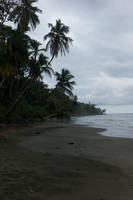 Beach 6 by Pipvl-stock