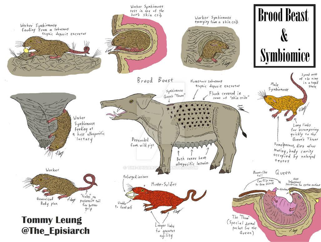 Brood Beast and Symbiomice