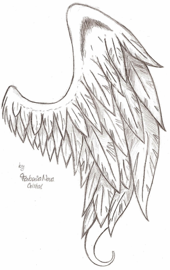 A fallen angels wing by fabulanovacristal on deviantart a fallen angels wing by fabulanovacristal thecheapjerseys Choice Image