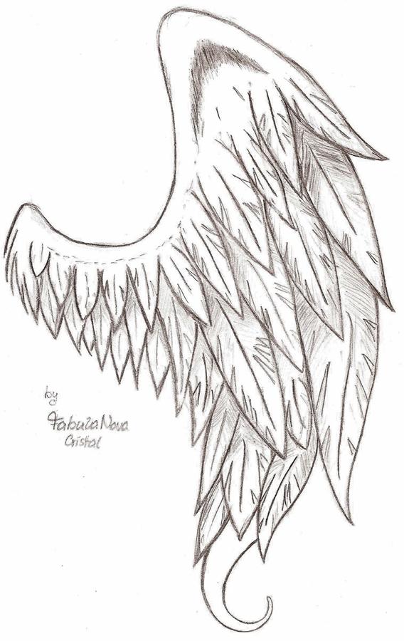 A Fallen Angel S Wing By Fabulanovacristal On Deviantart