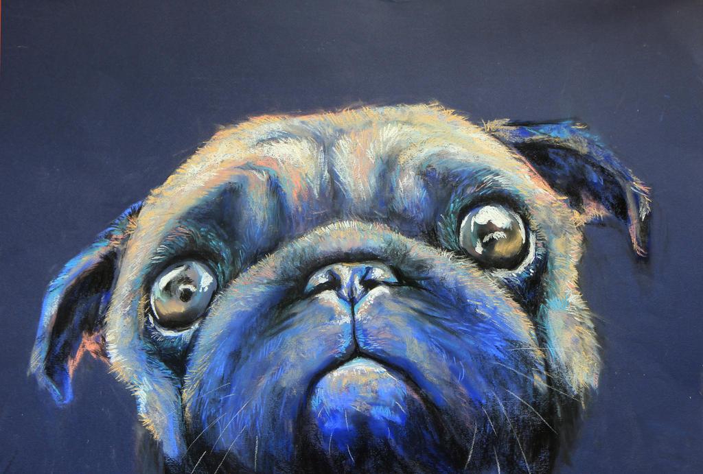 Cute Pug by Walyco