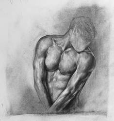 Study Torso Man by Walyco