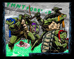 The TMNT ReImagined