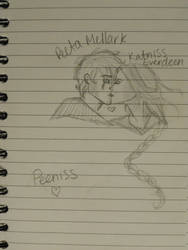Peeta and Katniss by Daniann8