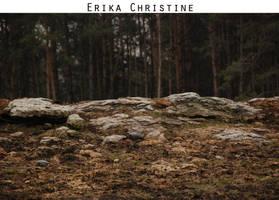 Landscape 1 by ErikaChristine