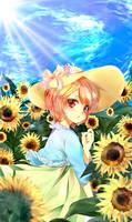 sun's gift by temiji