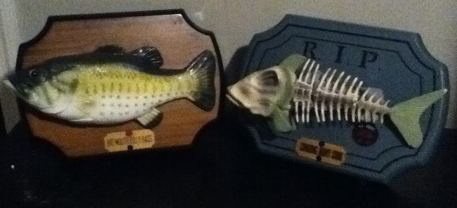 Big mouth billy bass and singing boney soul by for Big mouth billy bass singing fish