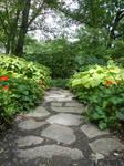 Garden Stock 25