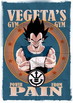 Vegeta's Gym