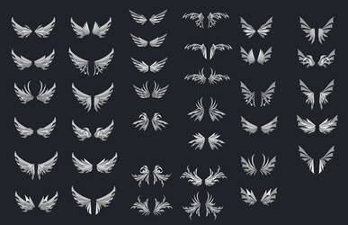 Wing Designs 1