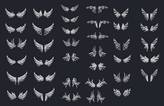 Wing Designs 1