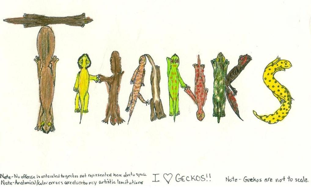 Gecko thank you note by PickleWeasel on DeviantArt