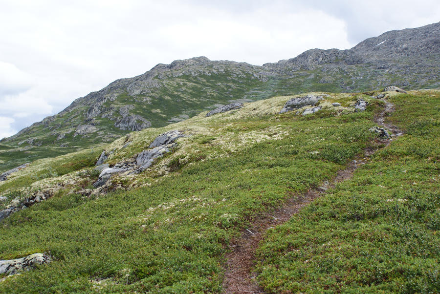 Mountain path by Seluias-stock