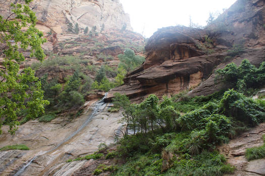 Zion Canyon I