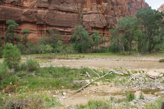 Zion Canyon III