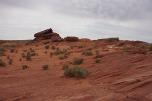 Canyon ground in Utah II by Seluias-stock