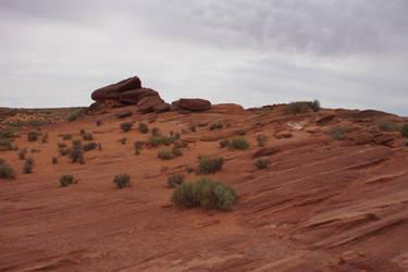 Canyon ground in Utah II
