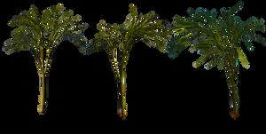 Plants - 3 by Vladlena111