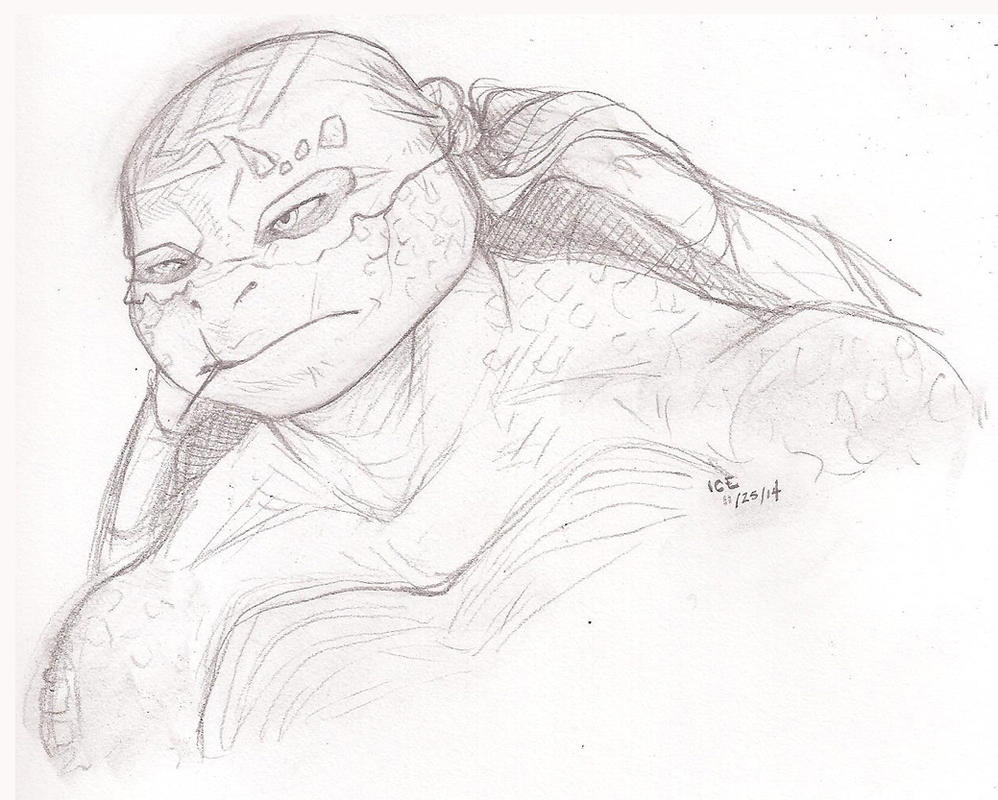 2k14 Raph by iceicefangurl