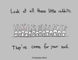 Little Rabbits by sebreg