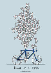 Bunnies on a bicycle