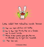 Little Rabbit and Carrots