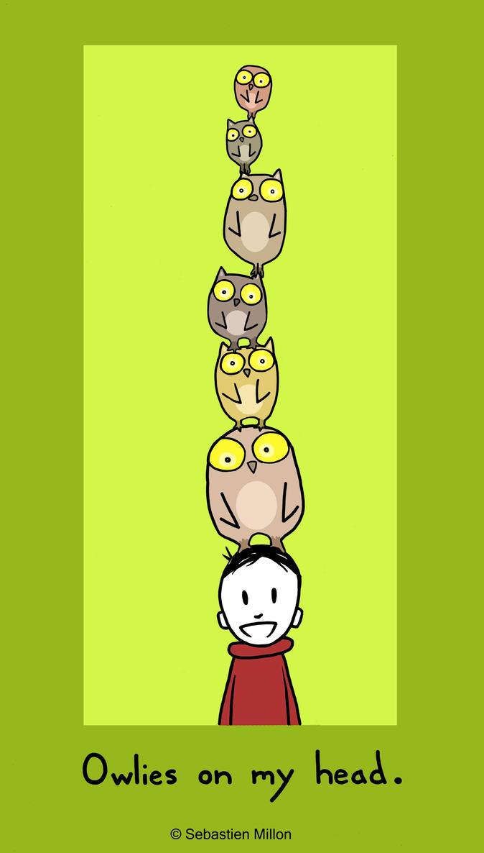 Owlies on My Head by sebreg
