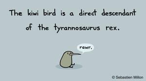 Kiwi T-rex