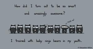 Baby Ninja Bears by sebreg