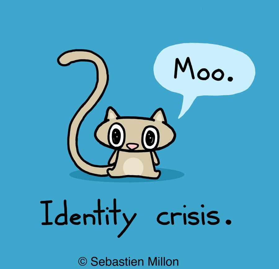 Identity Crisis Cat by sebreg