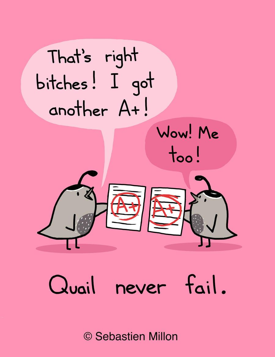 Quail Never Fail by sebreg