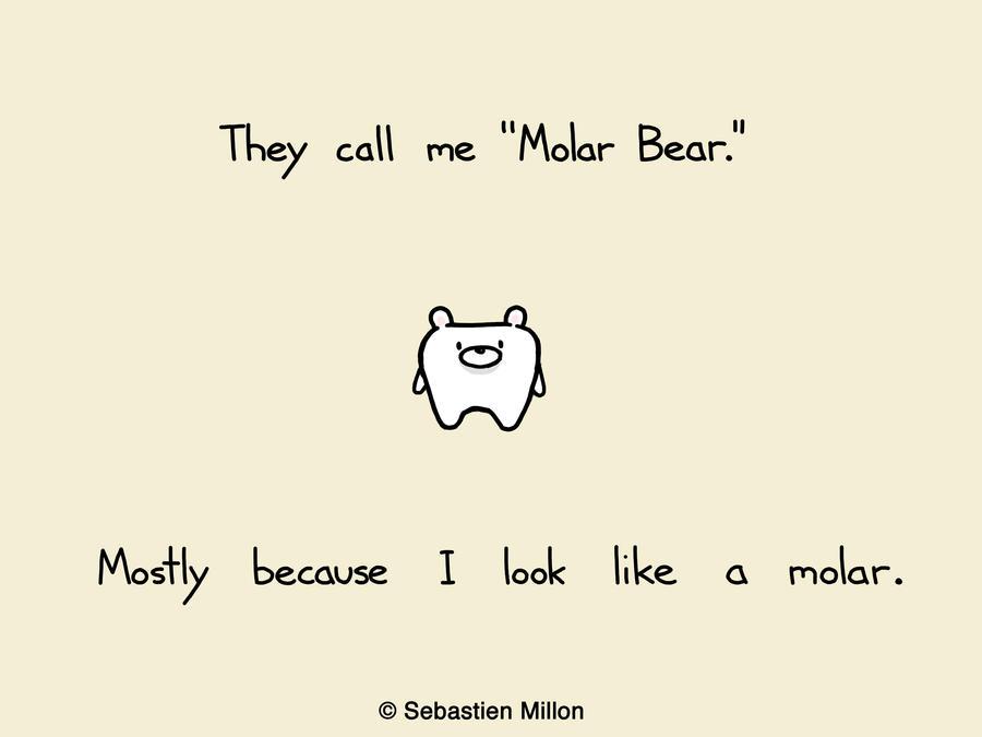 Molar Bear by sebreg