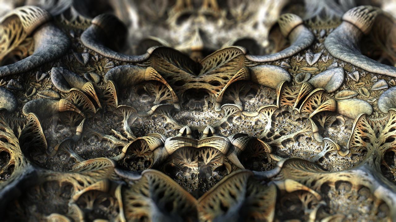 Biological Diversity by HalTenny