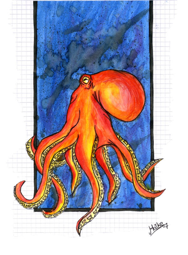 _Octopus_:O