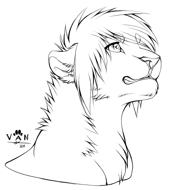 Line Drawing Wolf Face : View topic character design artist looking for work