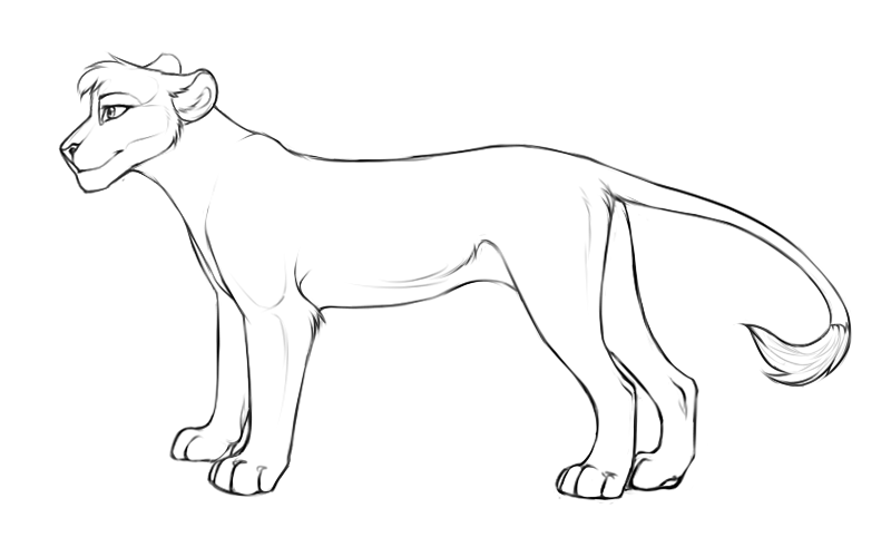 Female lion line drawing images for Lioness coloring pages