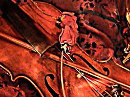 violin texture by mirrorimagestock
