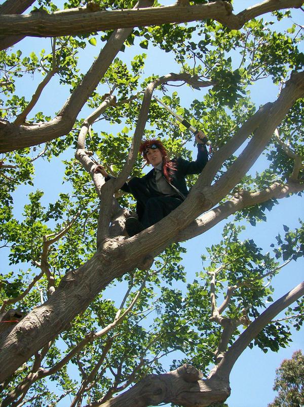 Reno in a Tree by FlareStone