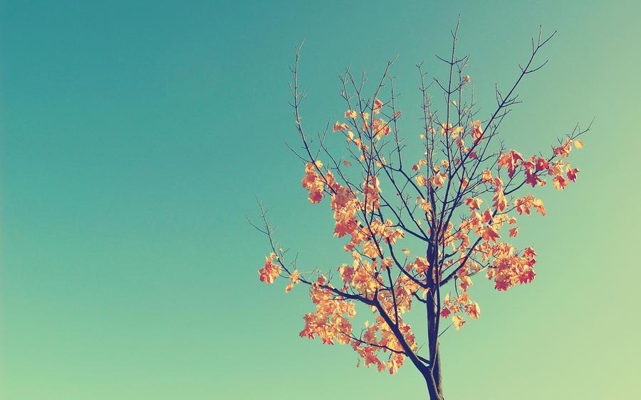 treeME by redoseqlko