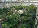 Temperate House Kew Gardens by bobswin