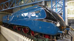 Mallard Steam Loco, York by bobswin