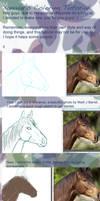 Corel Painter Tutorial Part 1