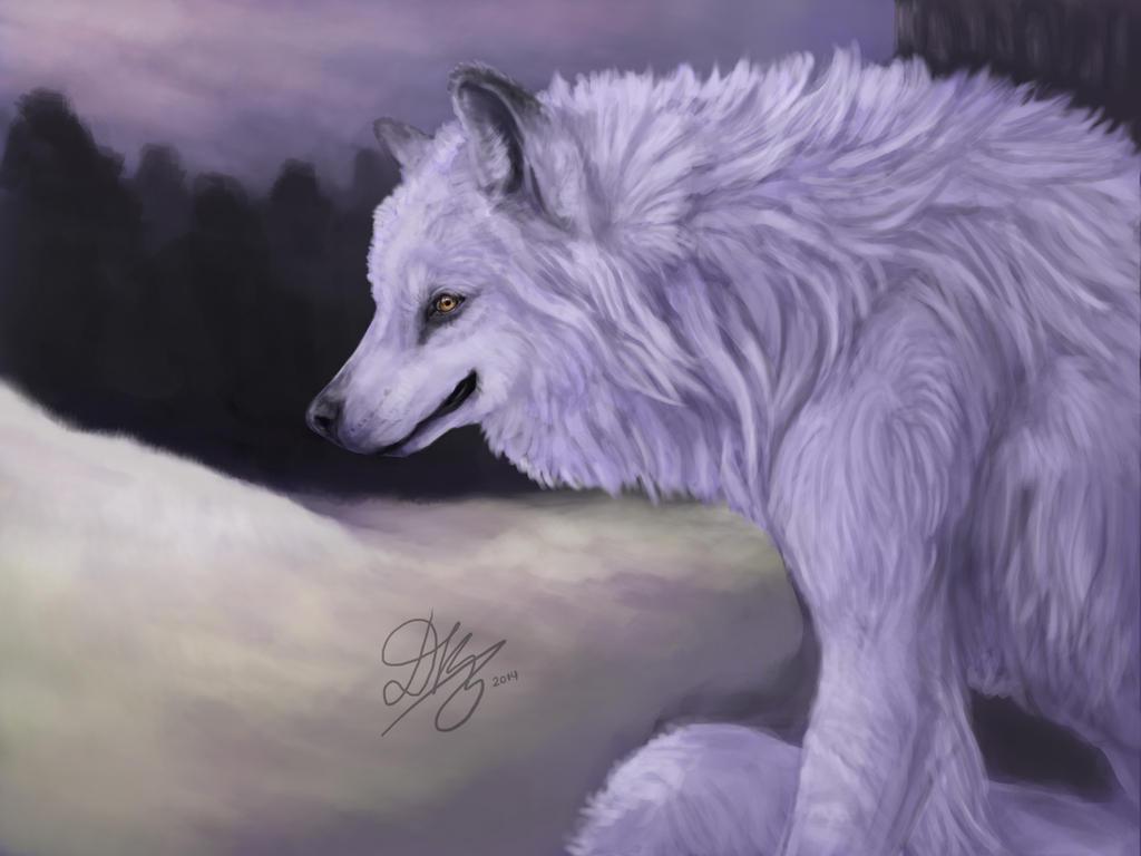 Purple sky by Dkaz