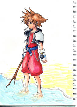 Sora on the Beach